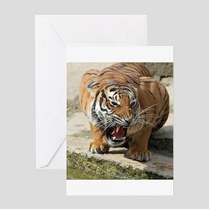 Tiger_2015_0156 Greeting Cards