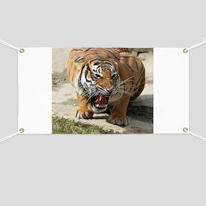 Tiger_2015_0156 Banner
