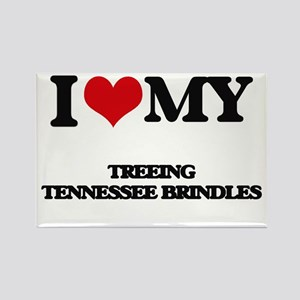 I love my Treeing Tennessee Brindles Magnets