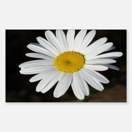 White Daisy Sticker (Rectangle)