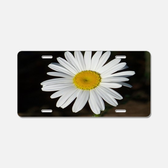 White Daisy Aluminum License Plate