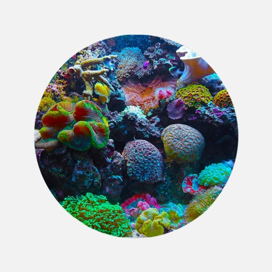 """Beautiful Coral Reef 3.5"""" Button"""