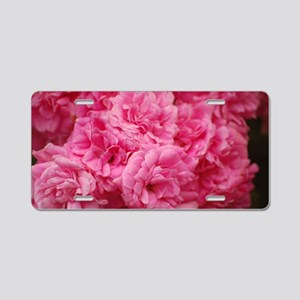Pale pink roses Aluminum License Plate