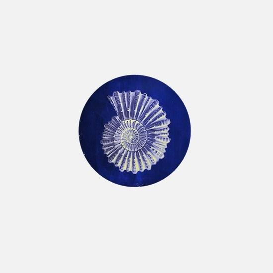 beach blue sea shells Mini Button