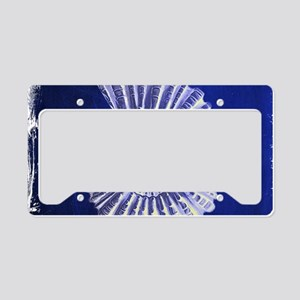 beach blue sea shells License Plate Holder
