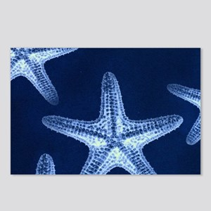 beach blue starfish Postcards (Package of 8)