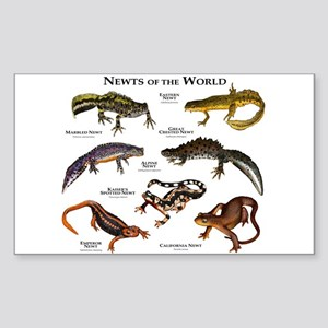 Newts of the World Sticker (Rectangle)
