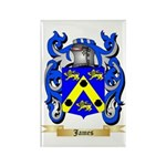 James Rectangle Magnet (100 pack)