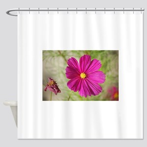 Sunlit pink flower Shower Curtain