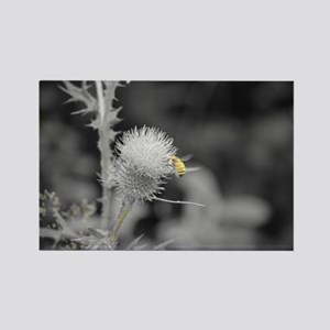 Bee and Thistle Rectangle Magnet