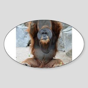 OrangUtan012 Sticker