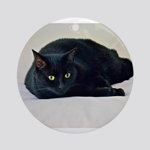Black Cat! Ornament (Round)
