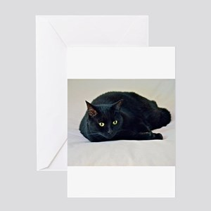 Black Cat! Greeting Cards