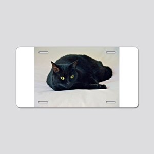 Black Cat! Aluminum License Plate
