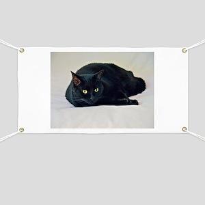 Black Cat! Banner