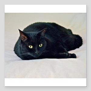 """Black Cat! Square Car Magnet 3"""" x 3"""""""