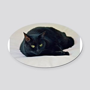 Black Cat! Oval Car Magnet