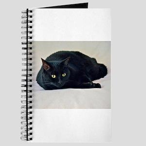 Black Cat! Journal