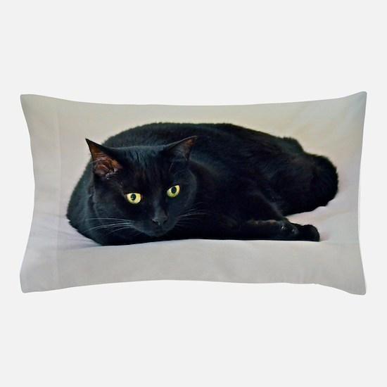 Black Cat! Pillow Case
