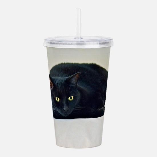 Black Cat! Acrylic Double-wall Tumbler