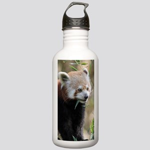 Red Panda 003 Stainless Water Bottle 1.0L