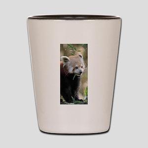 Red Panda 003 Shot Glass