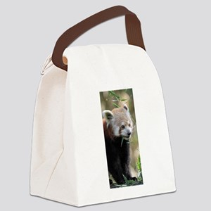 Red Panda 003 Canvas Lunch Bag