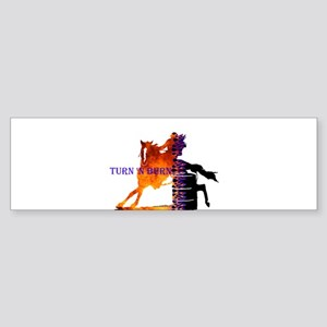 TNB Paint/Pinto Bumper Sticker