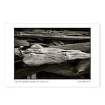 Low Tide Driftwood, Newar Postcards (Package of 8)