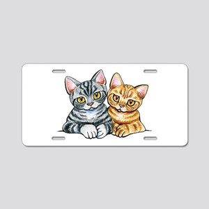 2 American Shorthair Aluminum License Plate