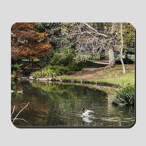 Duckpond Scene Mousepad