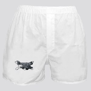 bearded collie Boxer Shorts