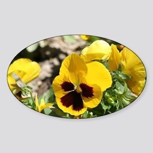 Yellow Pansy flower Sticker (Oval)