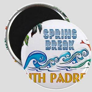 3D Palms Waves Sunset Spring Break S PADRE Magnets