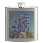 24x24 bluebonnet Flask