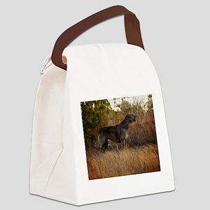 Handsome Male IRW Canvas Lunch Bag