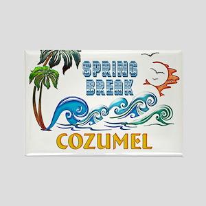 3D Palms Waves Sunset Spring Break COZUMEL Magnets