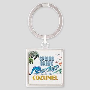 3D Palms Waves Sunset Spring Break COZUM Keychains
