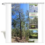 Large tall trees #odcctv Shower Curtain