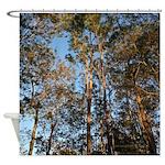 Golden Sunrise Forest Shower Curtain