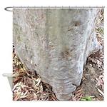 Gum Tree Living Stump Shower Curtain