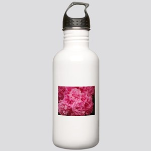 Pale pink roses Stainless Water Bottle 1.0L