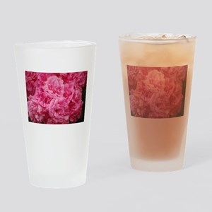 Pale pink roses Drinking Glass