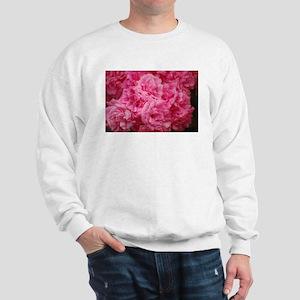 Pale pink roses Sweatshirt