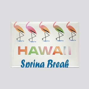 Tropical Flamingos HAWAII Spring Break Magnets