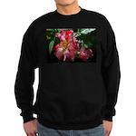 DSC_0010 Sweatshirt