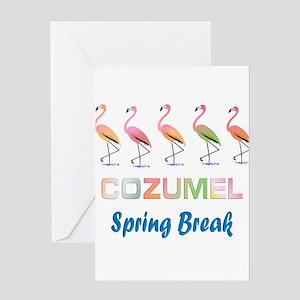 Tropical Flamingos COZUMEL Spring B Greeting Cards