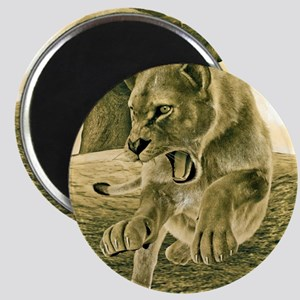 Hunting Lioness Magnets