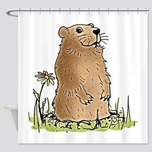 Cute Groundhog Shower Curtain