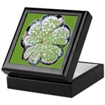Frosty Leaf Keepsake Box